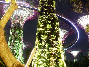 Gardens by the Bay in the night